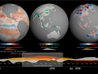 Multi-globe view of sea surface temperature