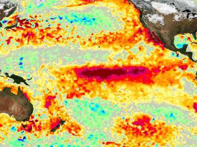 Global view of sea surface temperature