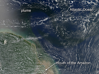 Algal blooms in a plume of nutrient-rich water pouring from the mouth of the Amazon River