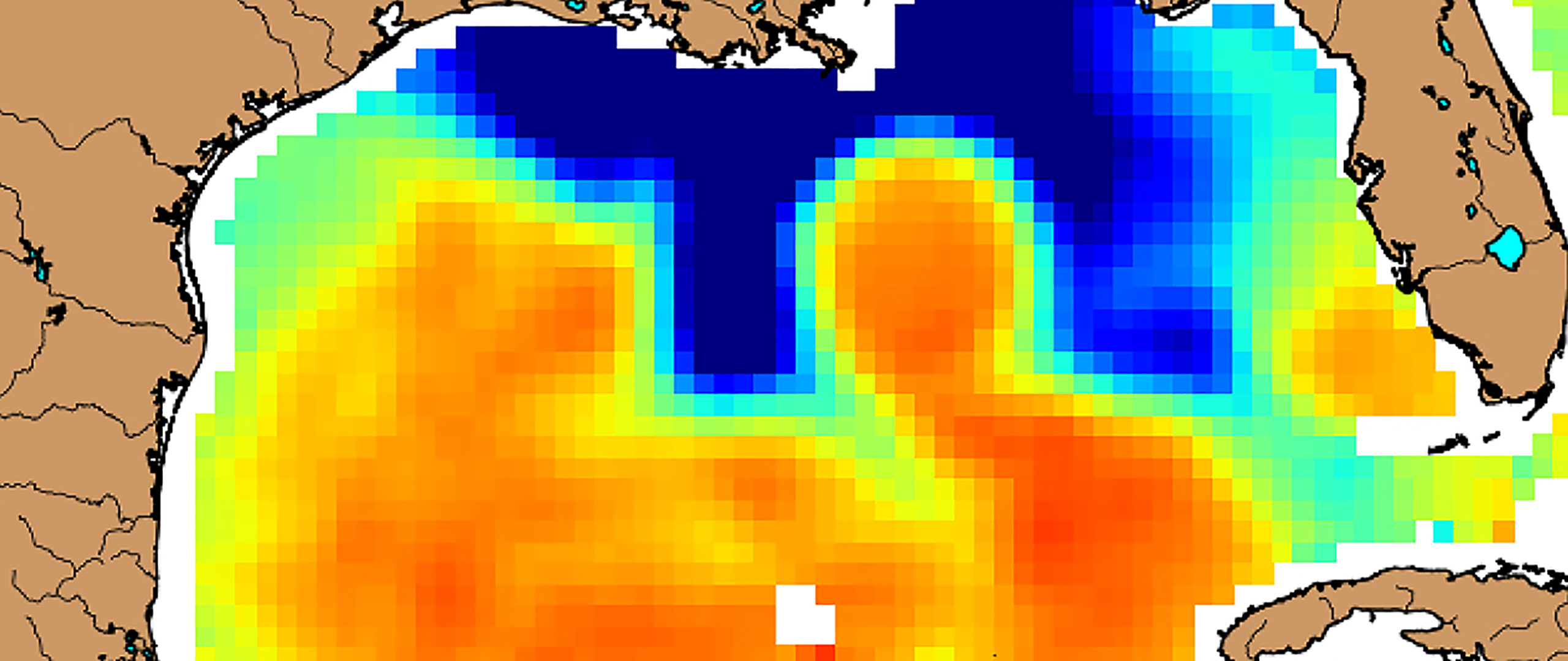 Map of sea surface temperature in the Gulf of Mexico