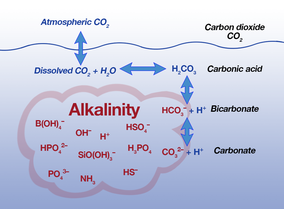 Alkalinity diagram