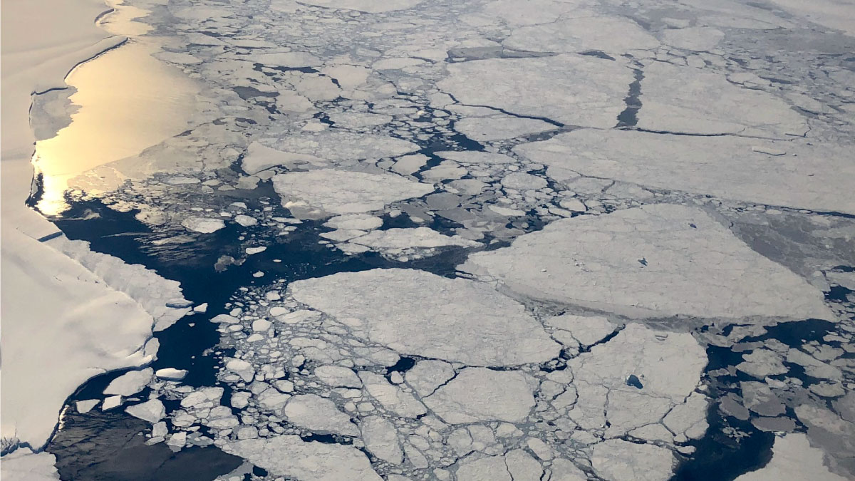 Aerial view of sea ice in the Arctic