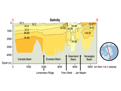 Distribution of salinity across the Arctic Ocean