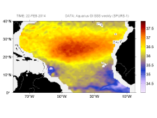 Sea surface salinity, February 22, 2014