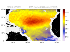 Sea surface salinity, March 22, 2014