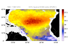 Sea surface salinity, May 17, 2014