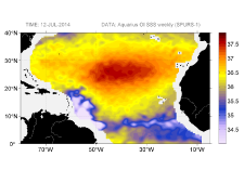 Sea surface salinity, July 12, 2014