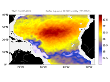 Sea surface salinity, August 9, 2014
