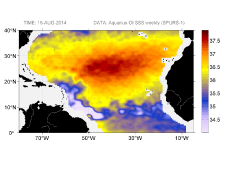 Sea surface salinity, August 16, 2014