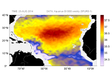 Sea surface salinity, August 23, 2014