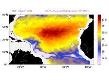 Sea surface salinity, August 30, 2014