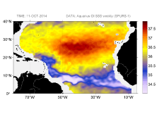 Sea surface salinity, October 11, 2014