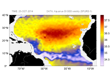 Sea surface salinity, October 25, 2014