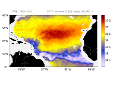 Sea surface salinity, November 1, 2014