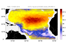 Sea surface salinity, November 15, 2014