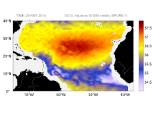 Sea surface salinity, November 29, 2014