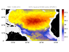 Sea surface salinity, December 13, 2014