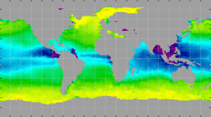 Sea surface density, May 2012