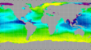 Sea surface density, August 2012