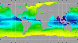 Sea surface density, November 2012