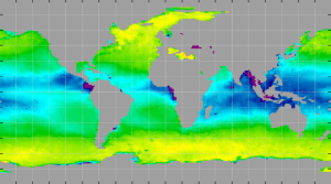 Sea surface density, January 2013