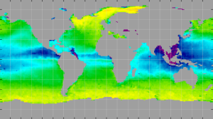 Sea surface density, June 2013