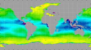 Sea surface density, January 2014