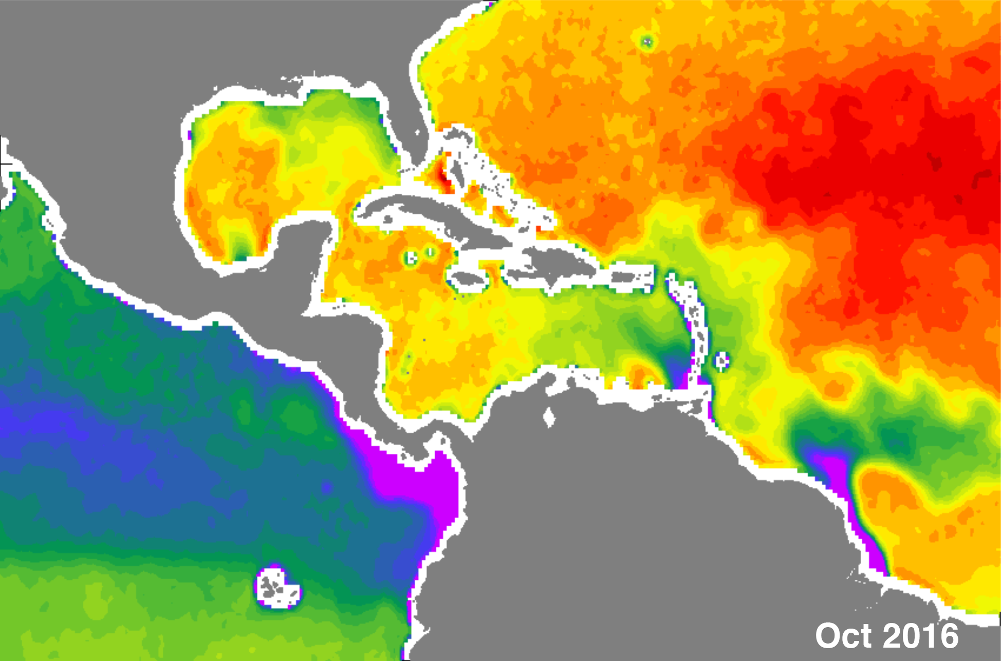 Sea surface salinity in the Gulf of Mexico